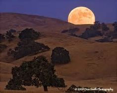 Full Moon Landscapes - Yahoo Image Search Results