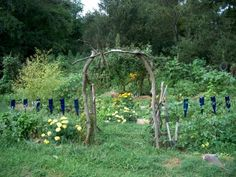 A picture from Emma Farms in Asheville, NC. Want to visit when I'm there....