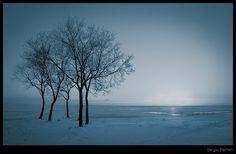 Winter by SergioPachini.deviantart.com