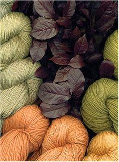 Naturfarben auf Wolle und Seide - Farben ohne giftige Zusatze: 9783833446924: Amazon.com: Books