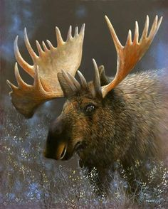pictures of moose | moose the moose painting has an added bonus by looking closely on the ...