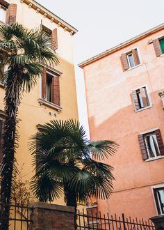 Venice in color blocking trend