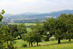 Oldřichovice, Moravskoslezský Kraj