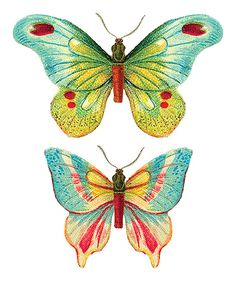 Look what I found on #zulily! Butterfly Temporary Tattoo Bundle by Tattly #zulilyfinds