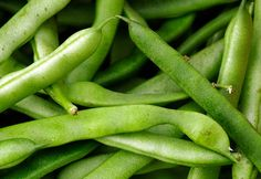 How to grow bush beans and pole beans in your garden Organic Vegetables, Growing Vegetables, Gardening For Beginners, Gardening Tips, Flower Garden Images, Bush Garden, Garden Gate, Garden Poles, Bush Beans