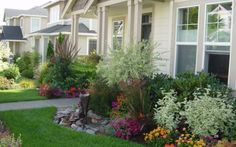 Rolex front yard landscaping ideas