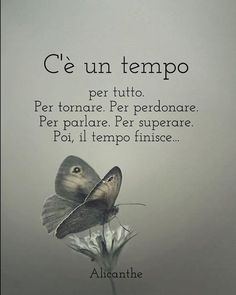 Un aforisma al giorno!!!!! - page 101 - aforismi... frasi celebri Poetry Quotes, Words Quotes, Love Quotes, Sayings, Journal Questions, Quotes Thoughts, Italian Quotes, Quotes About Everything, Motivational Phrases