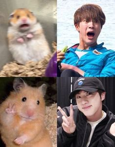 Everything about BTS and Blackpink - Actually, there will be all sorts of things. Random memes you choose etc. Bts Funny Videos, Bts Memes Hilarious, Funny Tweets, Foto Bts, Bts Bangtan Boy, Bts Jimin, K Pop, Vkook Memes, Bts Meme Faces