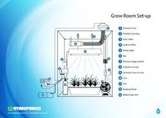 Hydroponic Shop - Everything you should know about Aquaponics Made Easy, Home Aquaponics, Backyard Aquaponics and Ecofriendly Aquaponics. Hydroponic Shop, Home Hydroponics, Hydroponic Farming, Backyard Aquaponics, Hydroponic Growing, Aquaponics Fish, Hydroponics System, Fish For Sale, Vertical Farming