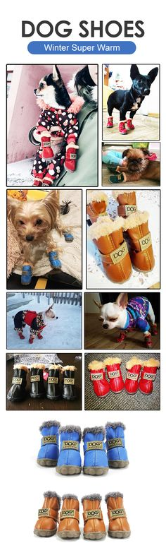 How to keep dog feet warm forever ?Guys, click the pic or the visit button to check out our purchasing page if you'd like to have one:)
