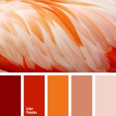 Free collection of color palettes ideas for all the occasions: decorate your house, flat, bedroom, kitchen, living room and even wedding with our color ideas | Page 328 of 350.