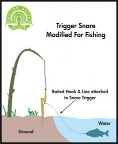 Trigger Snare Modified For Fishing. This would be hilarious! Fish flying everywhere.