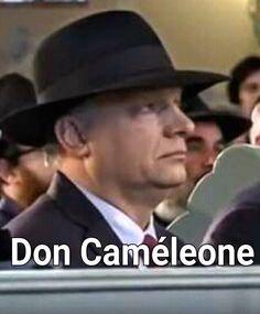 Simicska kivégzi a Fideszt. Mink