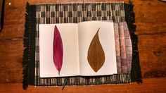 Folhas - formato e cor