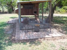 Miss Tis Coop     My lovely wife Tis and I decided to get a few chickens for the eggs and just to...