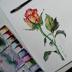 "5,920 Me gusta, 37 comentarios - Wei (@weitaillandier) en Instagram: ""Shall we paint a long stem rose for today? for anyone interested in learning how to paint this…"""