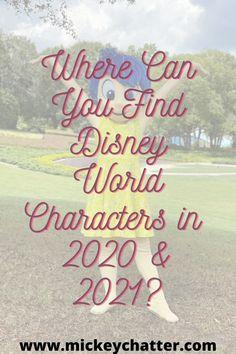 Disney On A Budget, Disney World Vacation Planning, Disney World Florida, Disney World Parks, Walt Disney World Vacations, Disney Planning, Florida Travel, Disney Cruise, Trip Planning