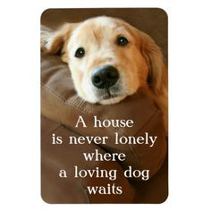 Golden Retriever A House Is Never Lonely Rectangle Magnets by #AugieDoggyStore