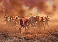 Lead The Stampede. | http://marcguberti.com