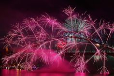 Fireworks light up the sky from The Sydney Harbour Bridge at midnight.