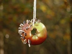 Natural Birdfeeder by bodfari_fs, via Flickr