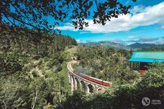 Roteiro de 16 dias no Sri Lanka (a minha viagem)   Alma de Viajante Sri Lanka, Mountains, Nature, Travel, The Journey, Wayfarer, Nice, Places, Naturaleza