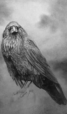☆ The Raven ☞ Symbolizes Magic, Healing, Creation. If a raven totem has come…