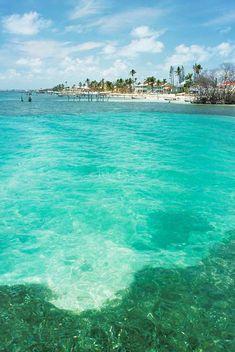 Belize. San Pedro. Beachfront Belize, San, America, Outdoor Decor, Travel, Viajes, Belize City, Trips, Traveling