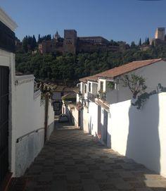 View of Alhambra from Albaicin. Granada.