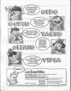Los cincos sentidos Preschool Spanish, Album, Signs, Comics, 3d, Chocolate, Google, Kindergarten Worksheets, Ideas