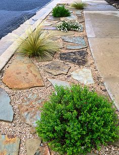 Easy Desert Landscaping Tips That Will Help You Design A Beautiful Yard Sidewalk Landscaping, Landscaping With Rocks, Outdoor Landscaping, Front Yard Landscaping, Backyard Landscaping, Landscaping Ideas, Sidewalk Ideas, Backyard Designs, Street Curb