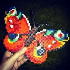 Butterfly hama beads by asiakoscielska