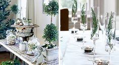 Christmas composition and table decoration in white with the use of live plants.
