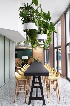 German design agency Roman Klis Design recently hired architecture & interior design firm Ippolito Fleitz Group to design their new office in Design Exterior, Office Interior Design, Office Interiors, Design Offices, Cafeteria Design, Workplace Design, Corporate Design, Corporate Offices, Office Plants