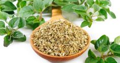 What Are the Health Benefits of Oregano?    I use American Herb and Spice Oregano Oil. Kills fungus, bacteria, and virus.   Oregomax is super too.