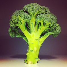Broccolart
