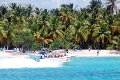 Saona Island Full Day Tour | Punta Cana Attractions