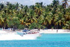 Saona Island Full Day Tour   Punta Cana Attractions