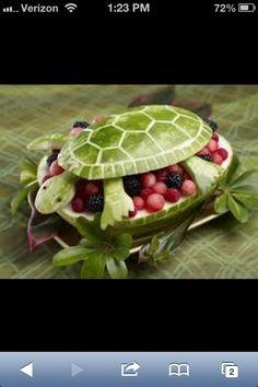 Turtle Fruit Display