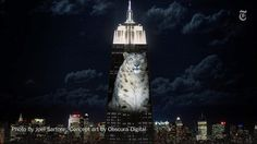 Giant images of endangered species will be projected on the Empire State Building tonight http://nyti.ms/1guwQ96