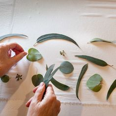 Ecoprint, la alquimia de las hojas   Diseño   MG Magazine Shibori, Plant Leaves, Projects To Try, Quilting, Textiles, Invitations, Etsy, Stamping, Charms