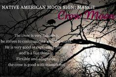 Native American Moon Sign: March Crow Moon Me and Harmony Native American Astrology, Native American Wisdom, Libra, Astrology Zodiac, Tarot, Gemini Rising, Moon Signs, 12 Zodiac Signs, Moon Magic