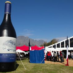 So much more to look forward to at this year`s Franschhoek Bastille Festival Stuff To Do, Things To Do, Looking Forward, Bastille, Competition, That Look, Berets, Cape Town, Ol