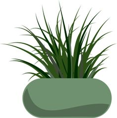PublicDomainVectors.org-Clip art of growing grass like plant in a wide pot.