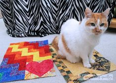 My Day on the Stitch It, Give It Blog Hop — The Inquiring Quilter Rainbow Connection, Ladder Stitch, Make Blog, Charm Pack, Cuddling, Quilt Patterns, Charity, Infinity, Kids Rugs