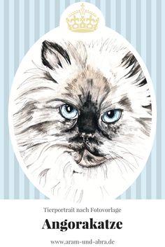 Zeichnung Katze - Angorakatze - Aquarell nach Foto - Aram und Abra