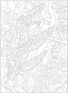 Creative Haven Sea Life Paint by Number by: George Toufexis - Dover Publications COLORING PAGE  3