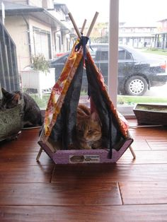 cat tents | luckybydesign Indoor Tents... for CATS! & Simplicity Crafts 9004 Cat Tent Fish Beds Pattern | Kitties ...