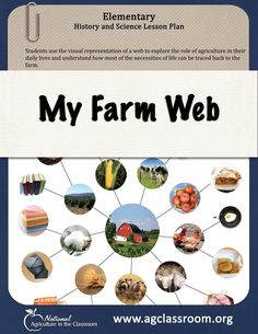 Elementary lesson plan where students create a web to learn how agriculture provides most of the necessities of life.