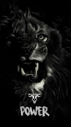 Tiger Quotes, Lion Quotes, Animal Quotes, Motivational Quotes Wallpaper, Inspirational Quotes With Images, Wallpaper Quotes, Eagle Wallpaper, Beast Wallpaper, Beast Mode Quotes